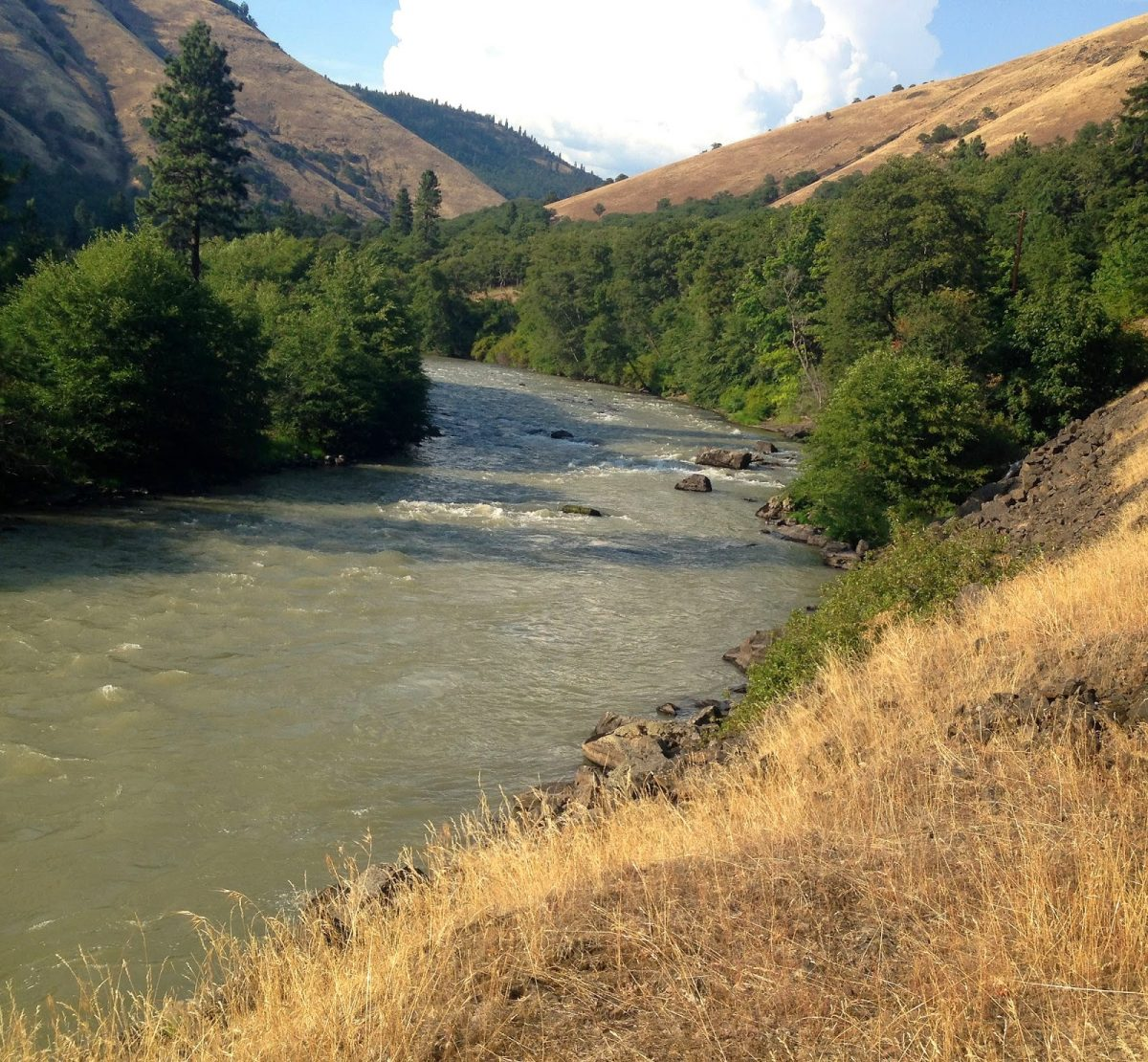 KLICKITAT RIVER REPORT – 8/3/14
