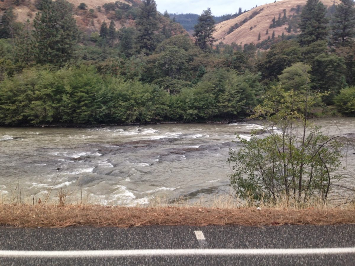 KLICKITAT RIVER REPORT  – 9/25/14