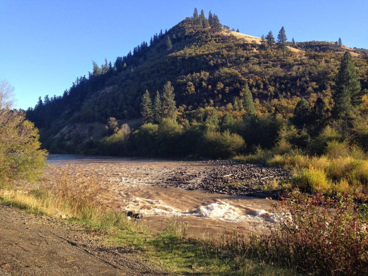 KLICKITAT RIVER REPORT – 10/18/14