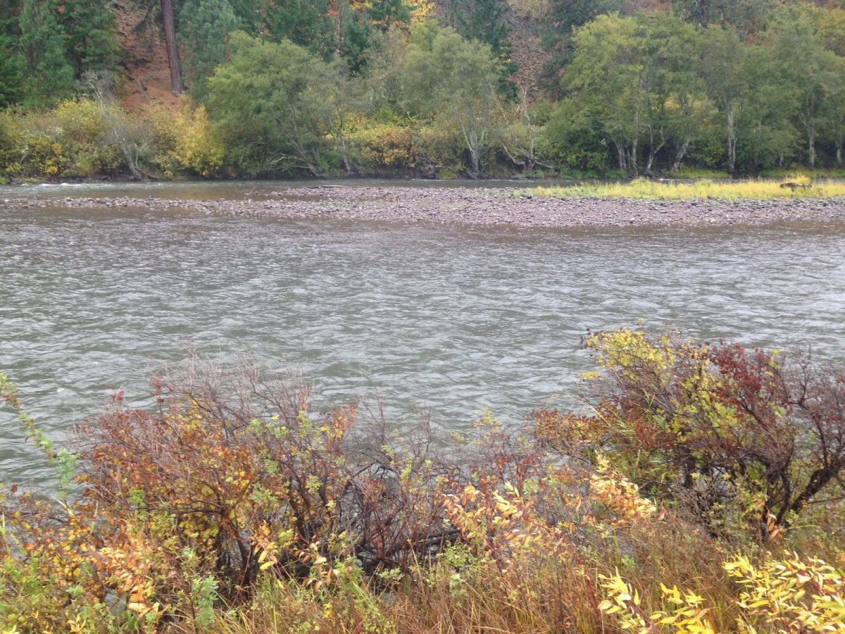 KLICKITAT RIVER REPORT – 10/21/14