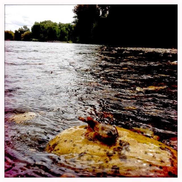 YAKIMA RIVER REPORT – 10/26/14
