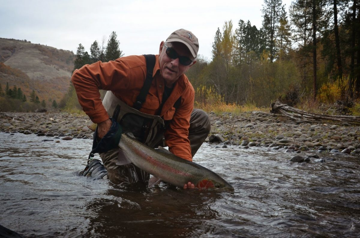 KLICKITAT RIVER REPORT – 11/8/14
