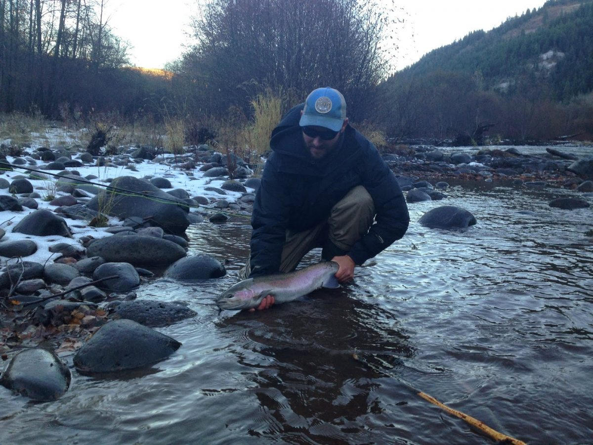 KLICKITAT RIVER REPORT 11/26/14