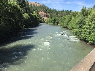 KLICKITAT RIVER REPORT – 6/11/15