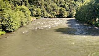 KLICKITAT RIVER REPORT – 6/10/15