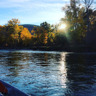 YAKIMA AND KLICKITAT RIVER REPORT 10/21/15