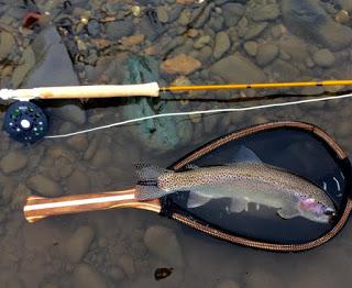 YAKIMA RIVER REPORT – 1/19/16