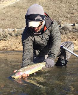YAKIMA RIVER REPORT – 1/29/16