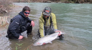 WINTER STEELHEAD FISHING REPORT 3-15-16