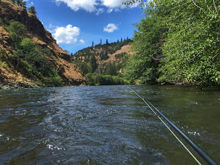 KLICKITAT RIVER REPORT     6-16-16