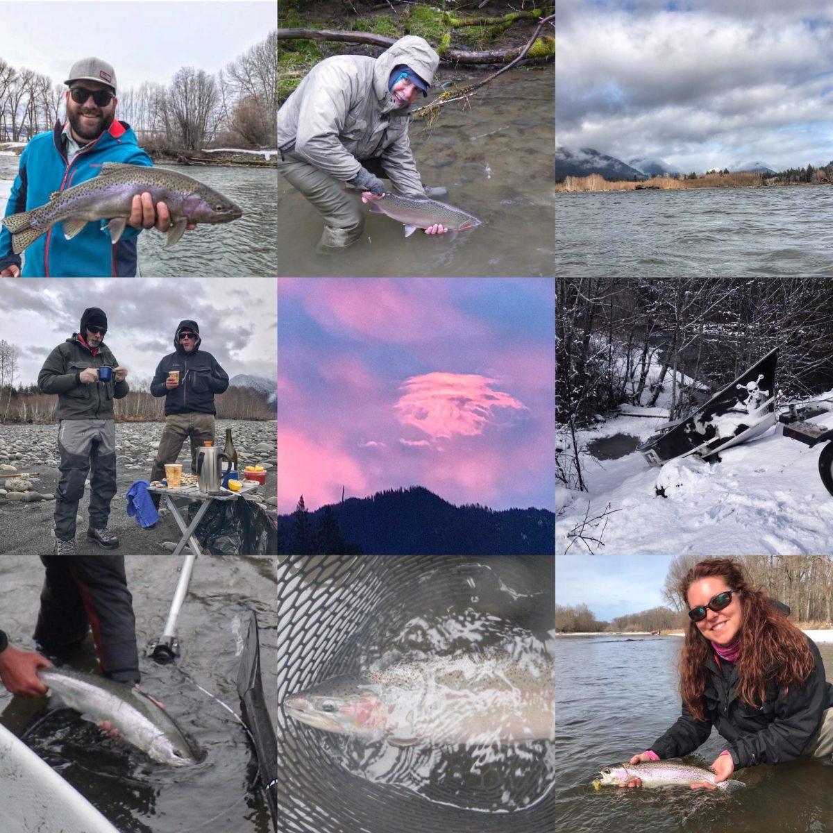 WINTER STEELHEAD  & YAKIMA RIVER REPORT    3/16/17