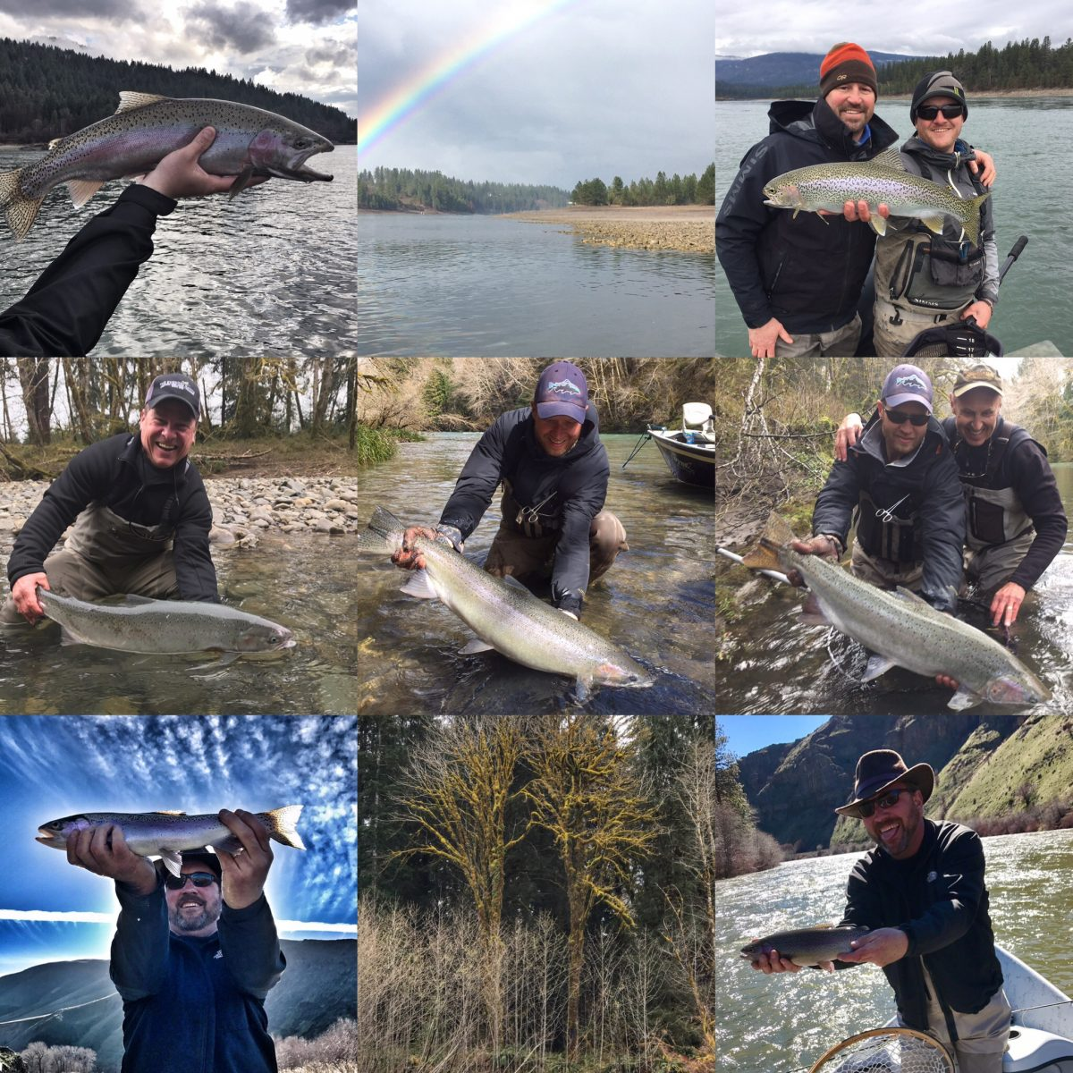 YAKIMA, WINTER STEELHEAD and UPPER COLUMBIA – 4/7/17