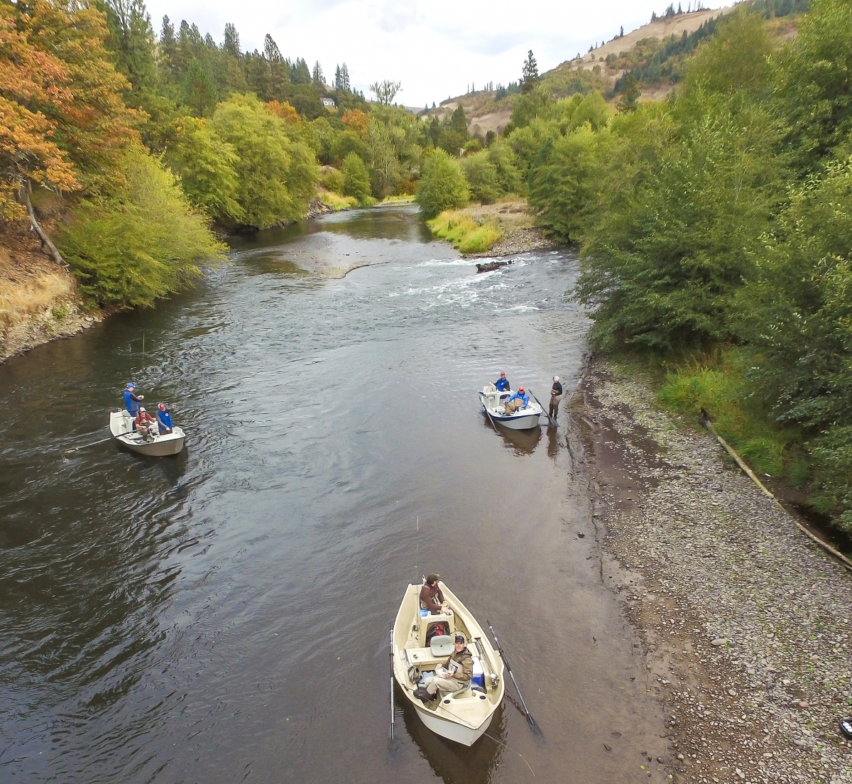 Klickitat river fishing guides the evening hatch for Klickitat river fishing report