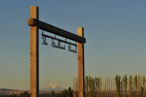 Steelhead Ranch